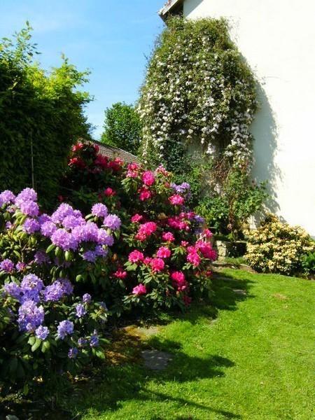 chambres d 39 h tes de charme au jardin fleuri a 1 km du gr5 et 13 km de montb liard 3. Black Bedroom Furniture Sets. Home Design Ideas